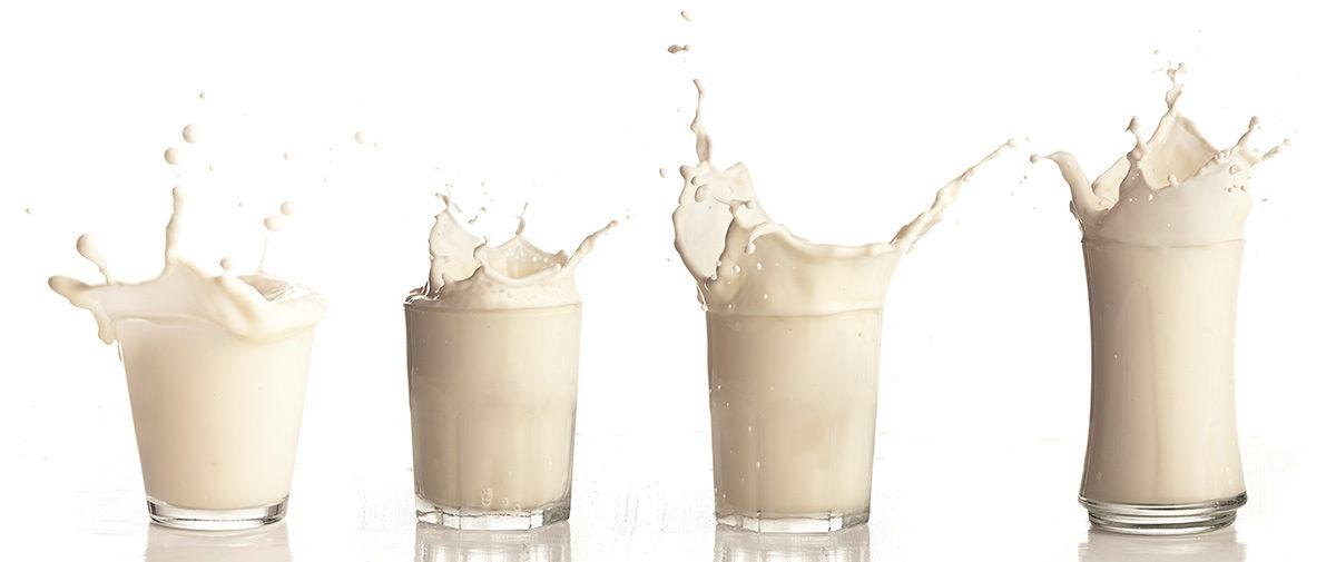 ¿Dónde radica la diferencia entre la leche vegetal y la de vaca?