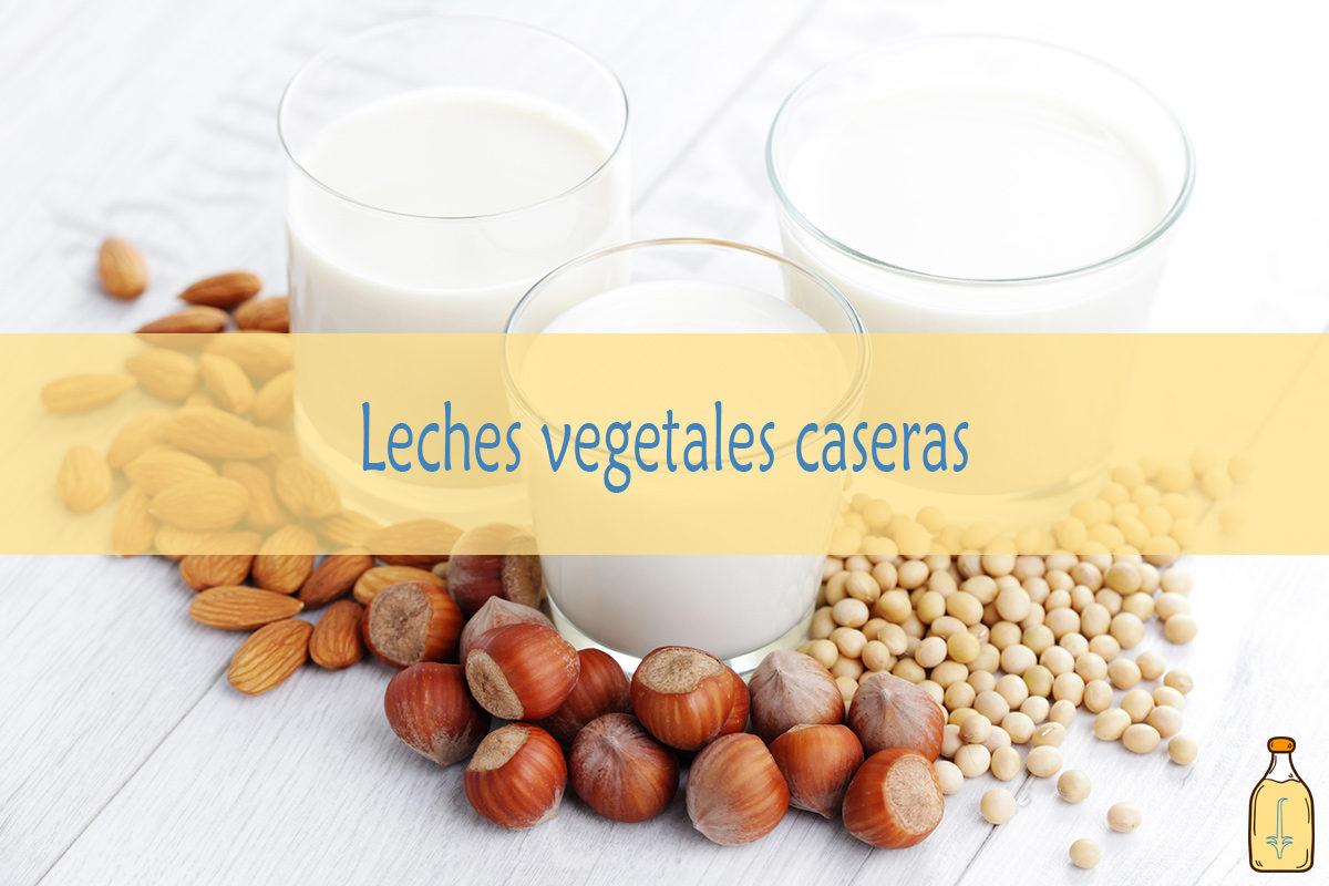 Leches vegetales caseras: Frescas, no pasteurizadas y sin conservantes